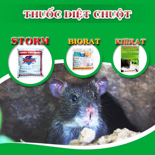 Cách nhận biết thuốc diệt chuột Storm qua bao bì