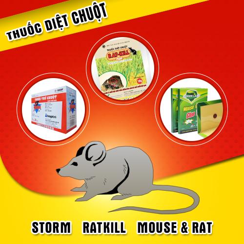 Hãy cẩn trọng với những con chuột